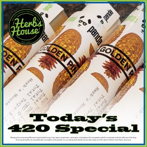Herbs House 420 Phat Panda Golden Pineapple
