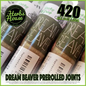 Herbs House 420 Special Dream Beaver