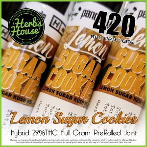 Herbs House Phat Panda 420 Special